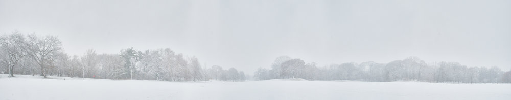 Prospect Park's Great Lawn during Winter Storm Quinn, March 7, 2018