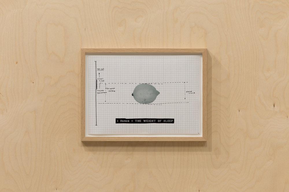 David Osbaldeson - Collective Gallery - 2014 - photo-Tom Nolan -1.jpg