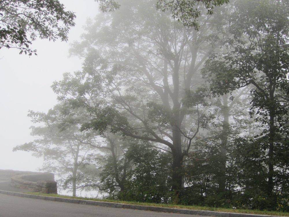 12_Charlottesville_07.jpg