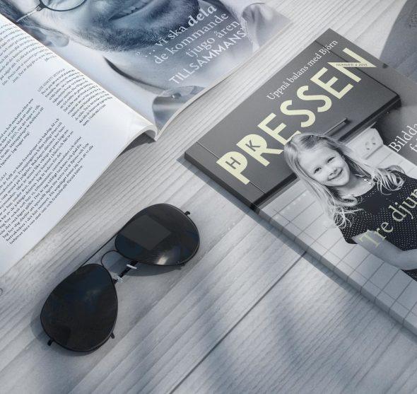 teaser_pressen-590x557.jpg