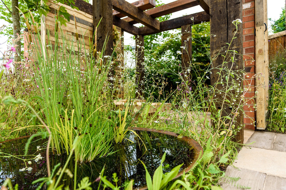 PC-GardenersWorld2018-015.jpg