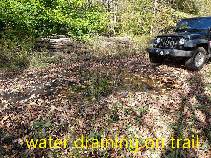 drainage on trail2.jpg