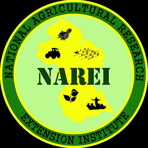 NAREI logo.png