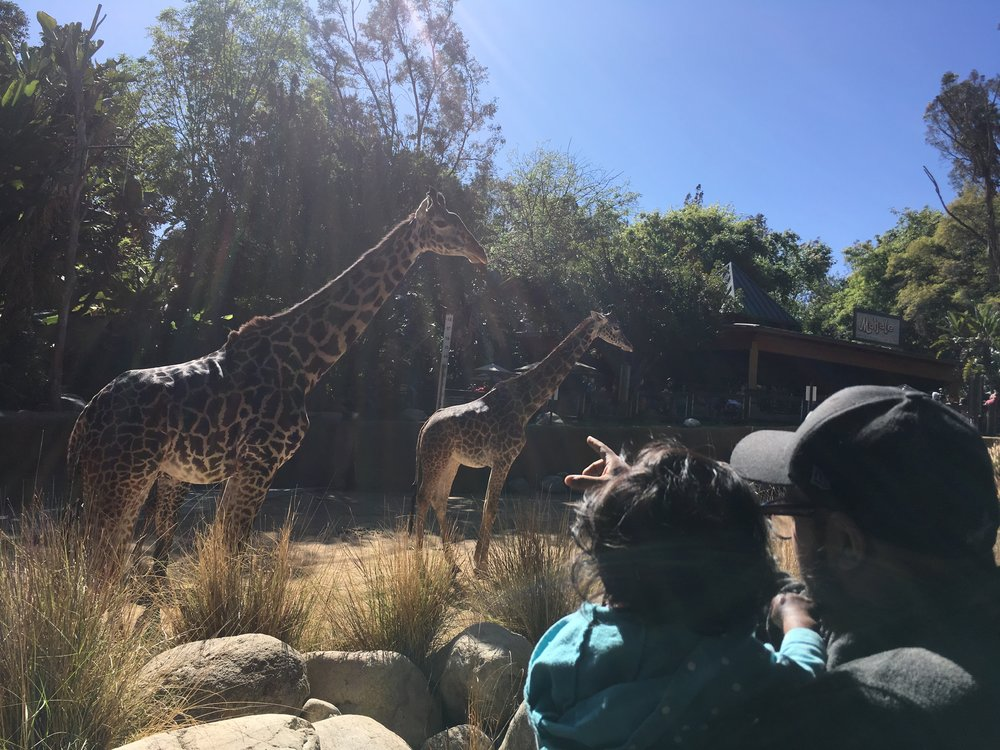 Just because new is sometimes hard, doesn't mean it can't be magical too. Learn how to create space in your life for more delight! Above is our first family visit to the LA Zoo:)