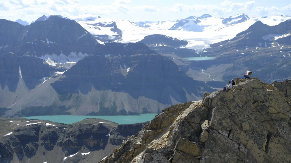 Wapta Icefield from Cirque Peak