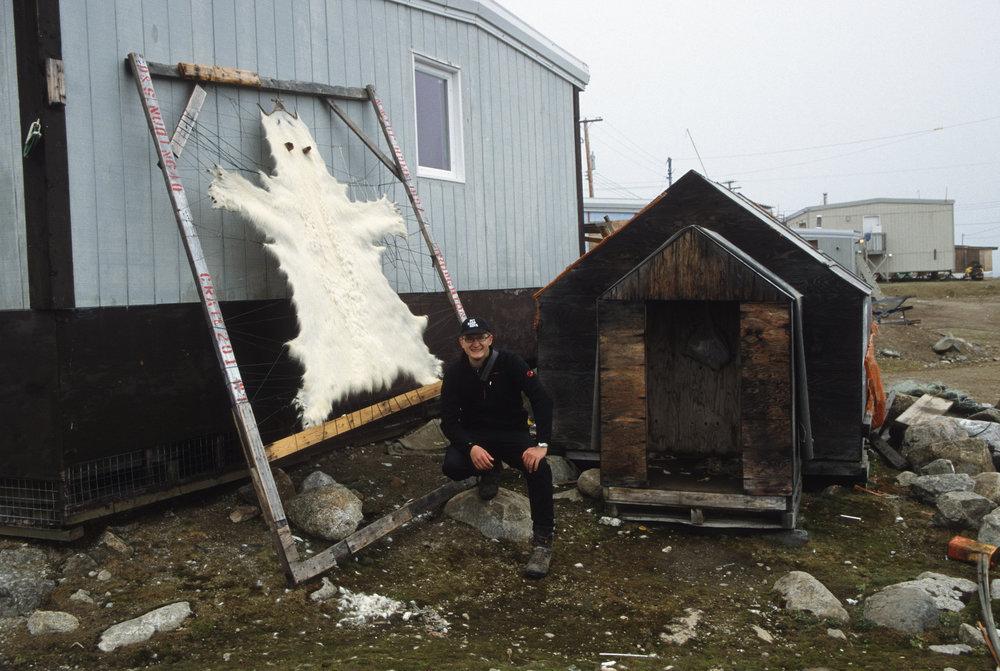 Qikiqtarjuaq - a polar bear hide