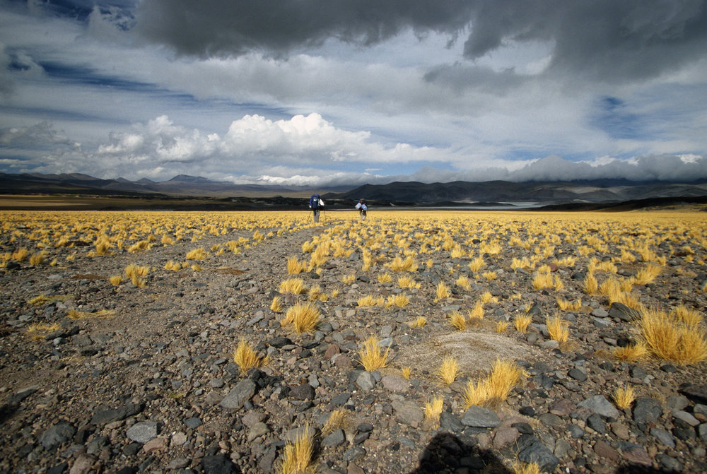 The Altiplano - walking back to Argentina
