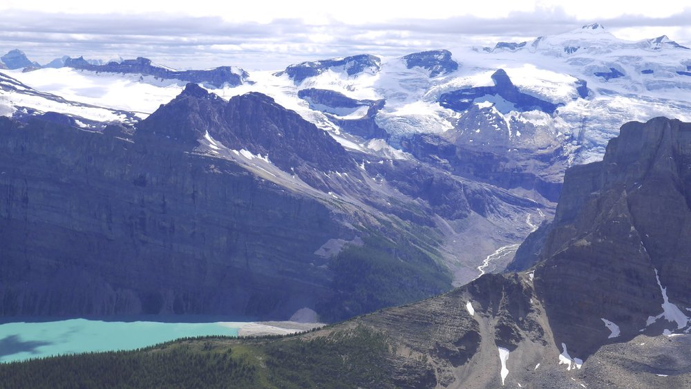 Wapta Icefield from Bow Peak