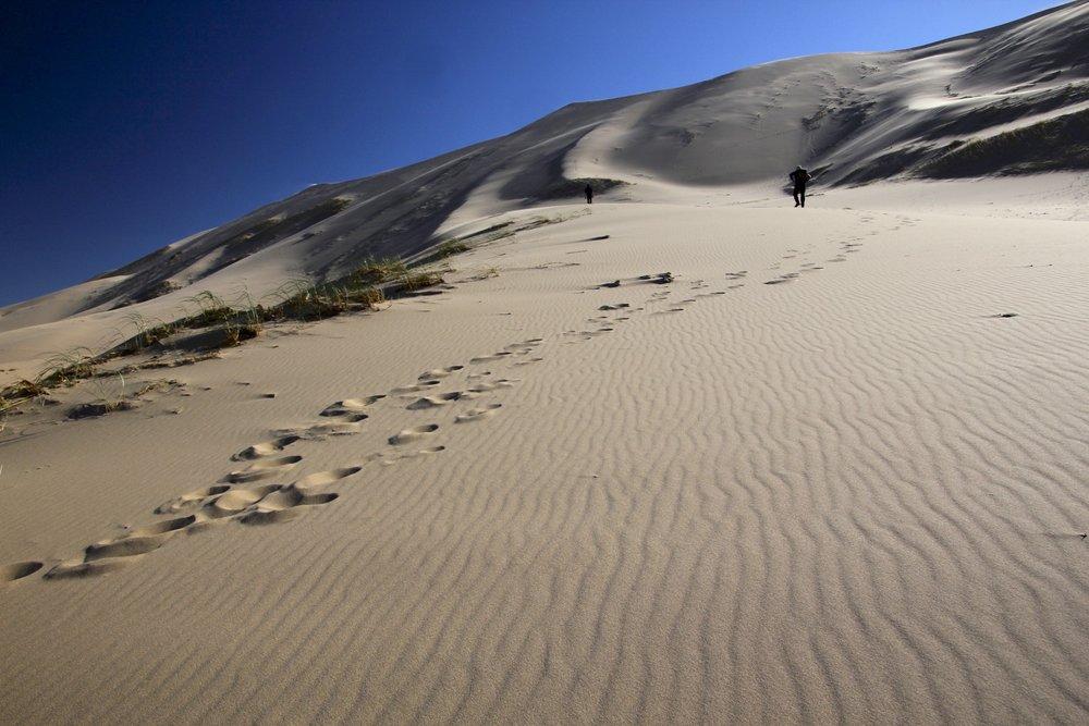 Climbing the sand hills
