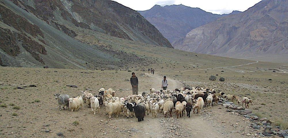 Between Karsha and Pishu