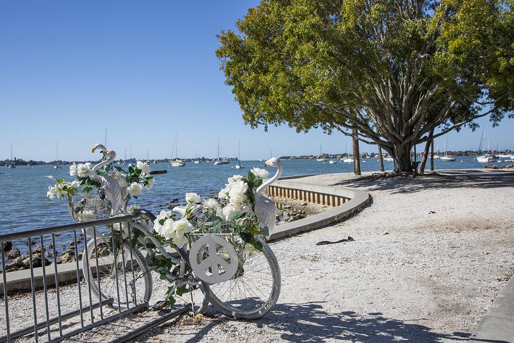 Bayfront Park - Bike by Dr. Nic