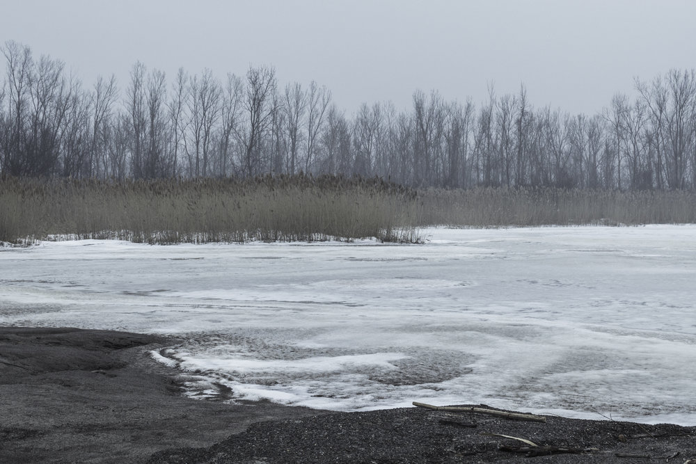 winter32.jpg