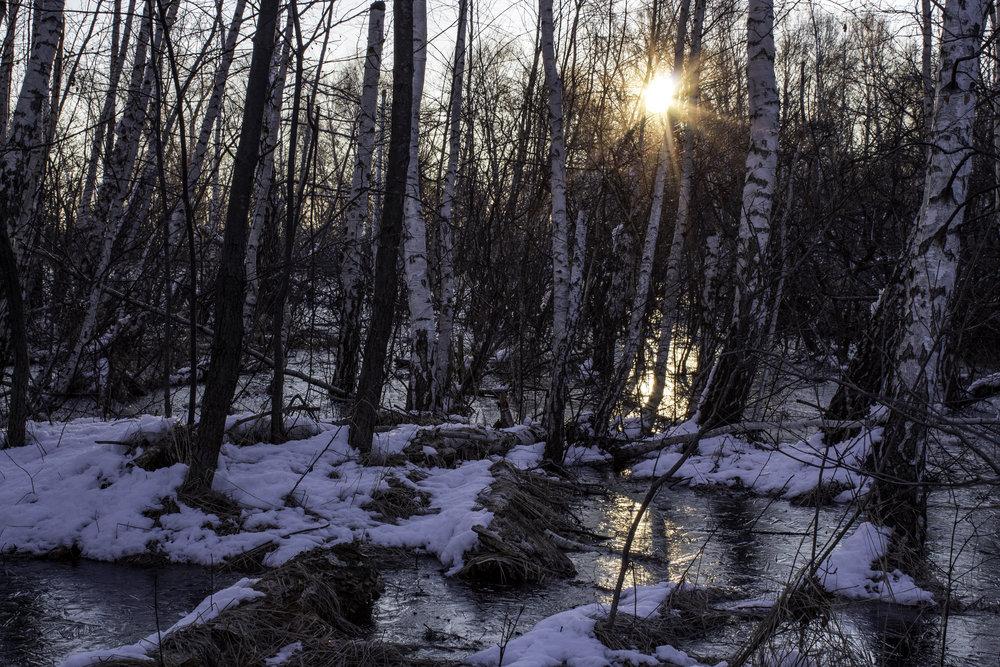 winter38.jpg