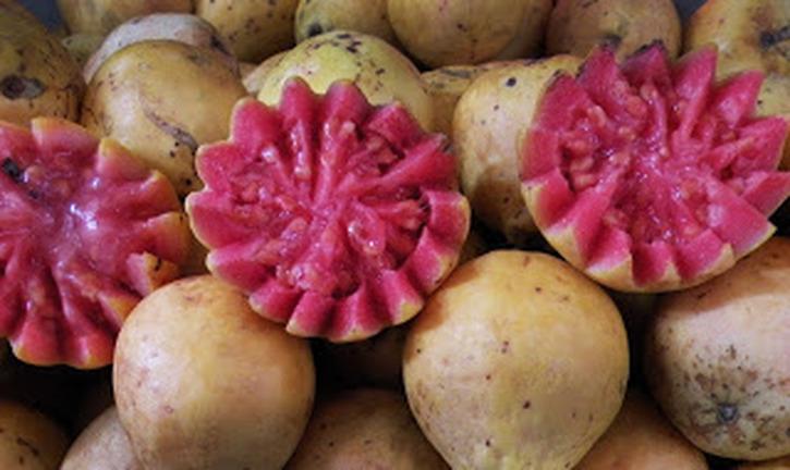 fruitmexicanfruit-1
