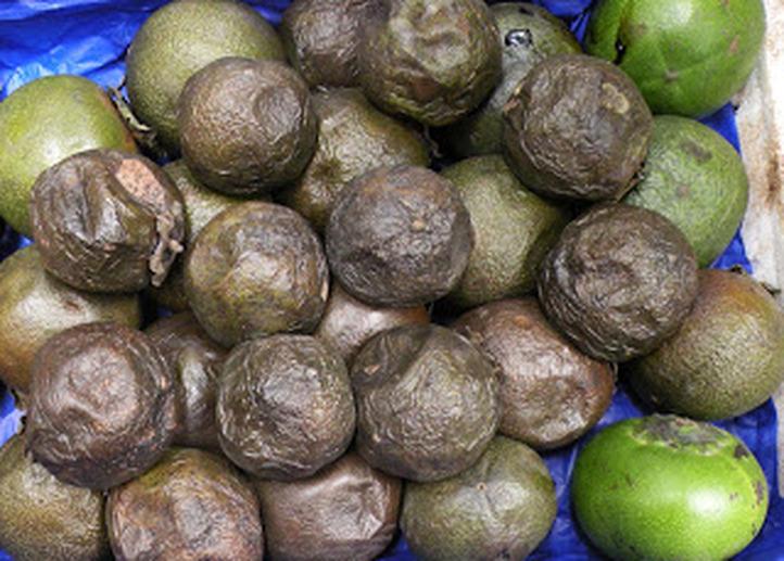 fruitmexicanfruit-4