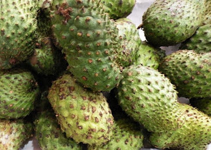 fruitmexicanfruit-6