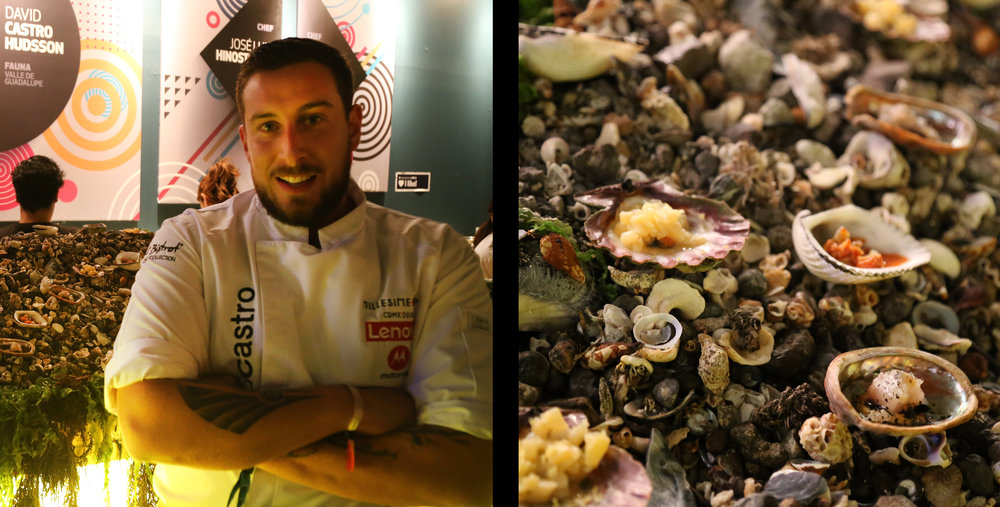 Chef David Castro Hussong heads the Valle de Guadalupe's  Fauna , one of this year's most talked about openings. Here he presented lightly-tweaked jewel-like shellfish