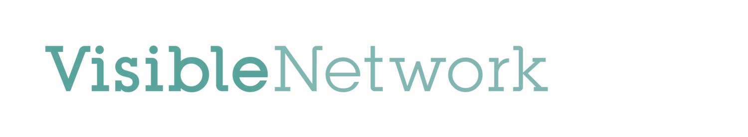 Visible Network Labs