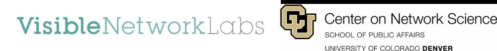 VNL-CNS Logo.png