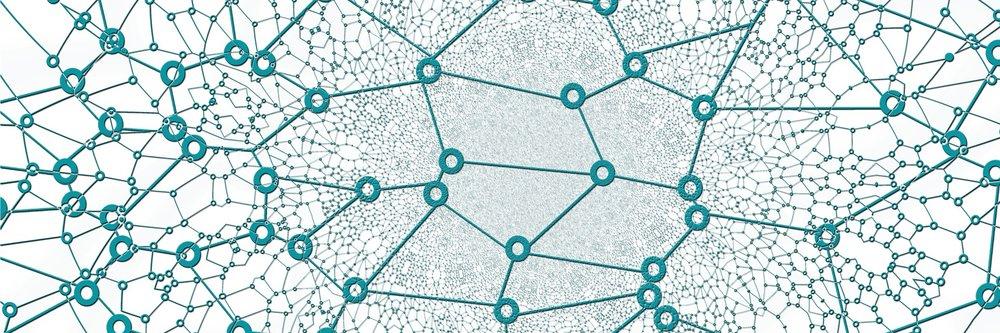 Networks.jpg.