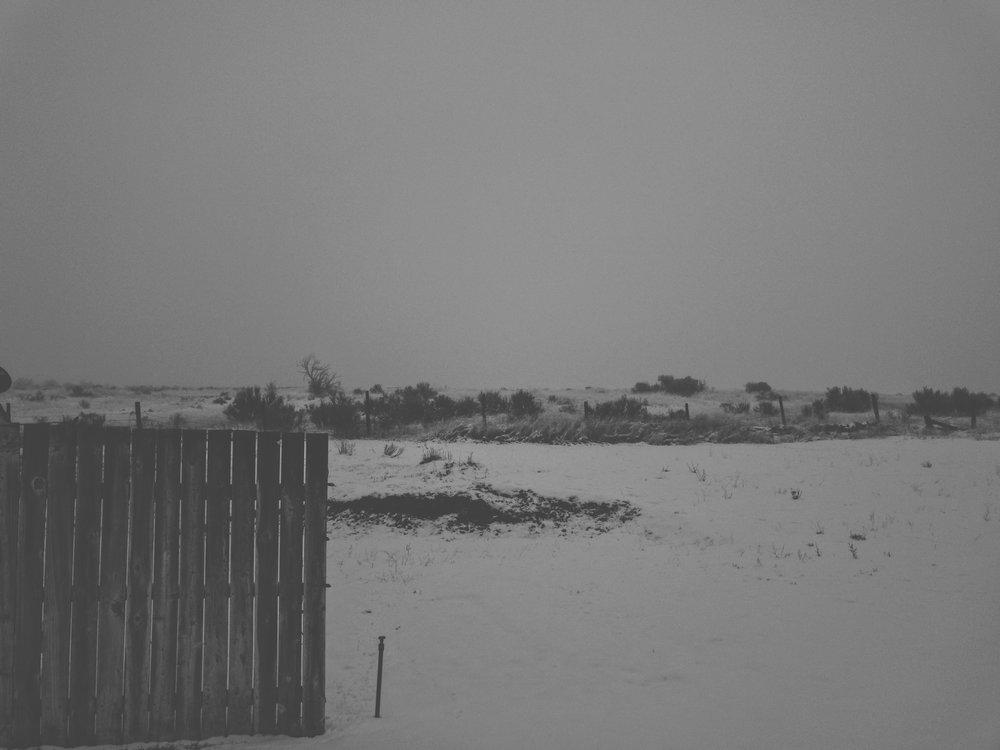 Tampico Snow