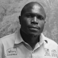 Bishop Ngobeli - South Africa