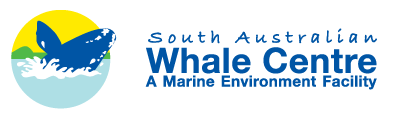 SA Whale Centre - Visit the South Australian Whale Centre and take an incredible interactive journey through our state heritage building. Ideally located in the heart of Victor Harbor; here you will discover new information at every turn. OPEN: Daily 10:30-5pm (excluding Christmas Day)2 Railway Tce(08) 8551 0750
