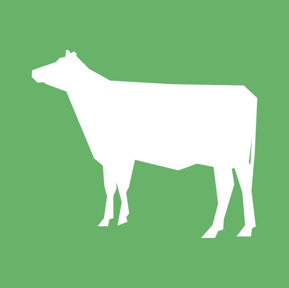 Modus-operandi-dairy-free.jpg