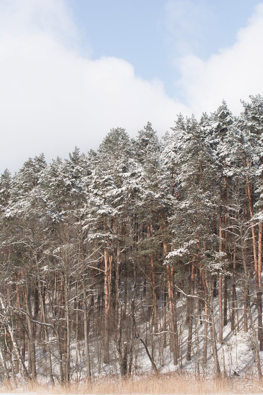 Lithuania 2018