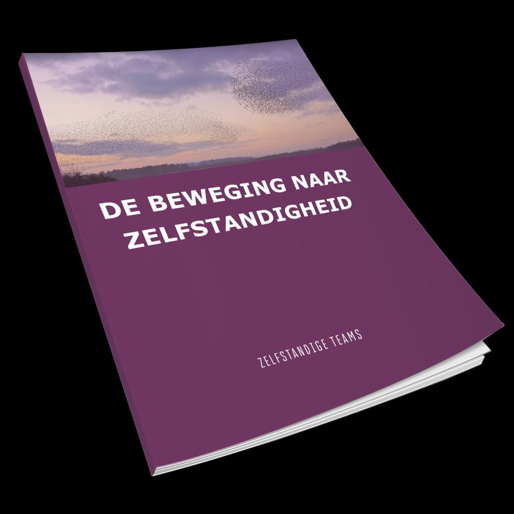 e-reader-ZT.png