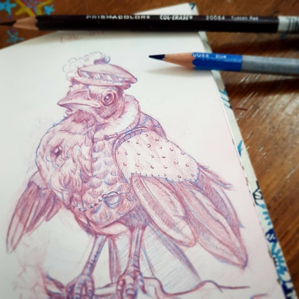 Slow day at work so I'm finishing off this little fella between customers. What would be a good name for a baby magpie?    Blue and Tuscan Red Prismacolor Col-erase Pencils in sketchbook.    #magpie #birdart #sketchbook #january2018 #colerasepencil #wip #australianartist #australianillustrator #melbourneartist #melbourneillustrator #belindaillustrates