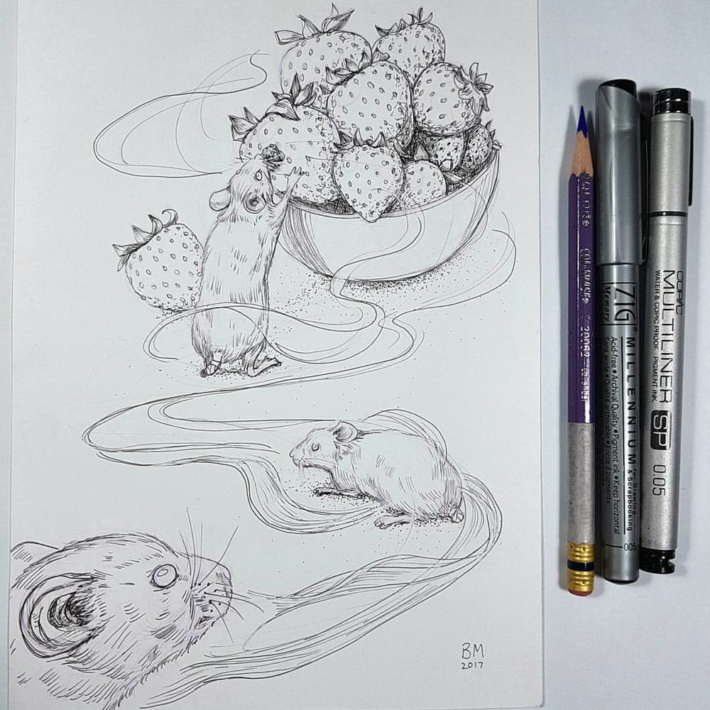 "The scent of the strawberries wafted towards them, a trail that they could not resist. In their minds eye the three blind mice envisaged the juicy fruit and their mouths watered.    Inktober prompts were ""trail, juicy and blind"". Materials used were  Lavender prismacolor Col-erase pencil, Copic multiliner and Zig multiliner on Bristol board.    @jakeparker @Inktober #inktober #inktober2017 #belindaillustrates #3blindmice #mice #strawberries #inkdrawing"