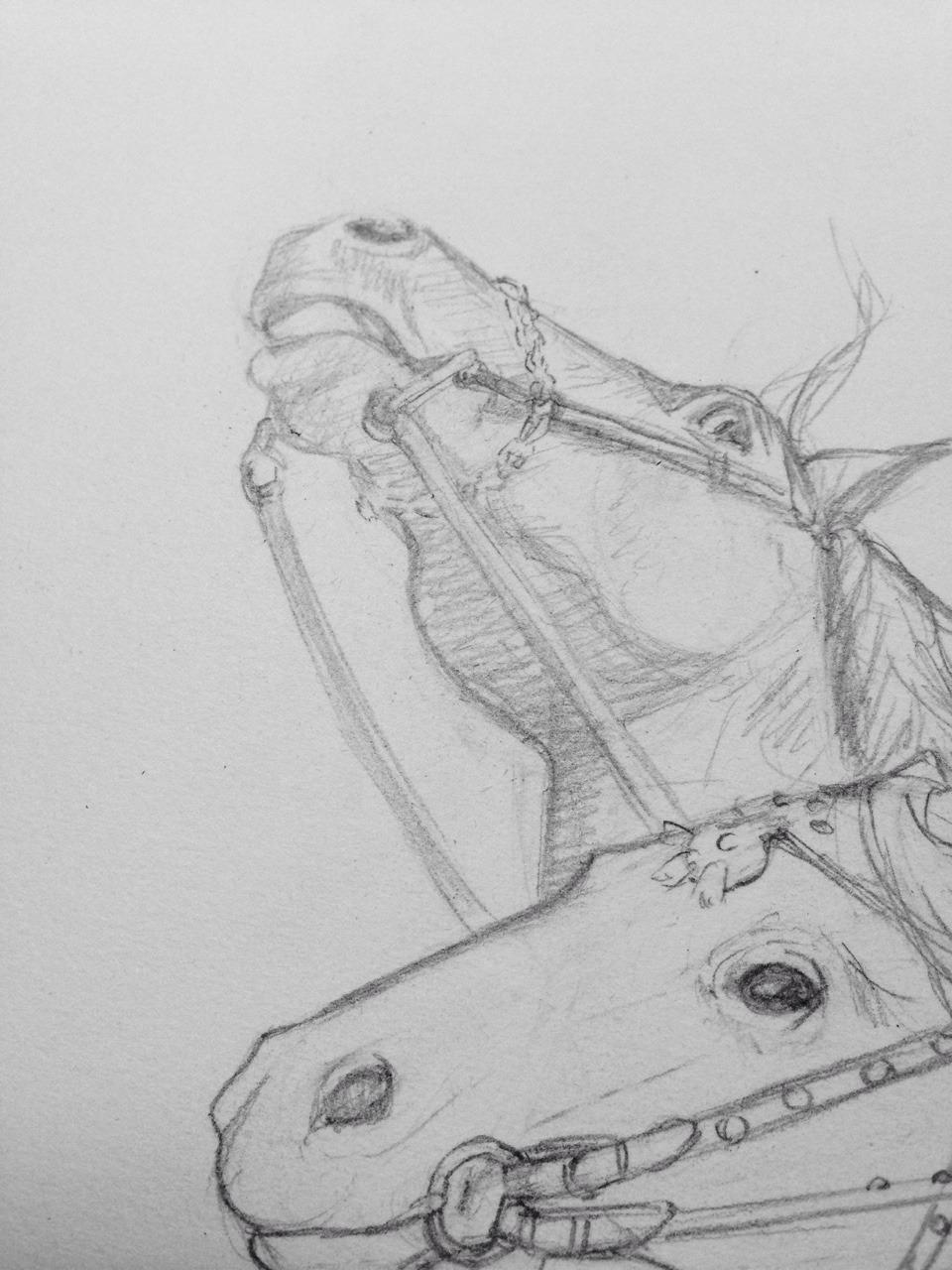 A sneak peek at something new on the drawing table #belindaillustrates #pencildrawing #childrensbookillustration #sneakpeek #horses #lovedrawinghorses #bree  #hwin #thehorseandhisboy #cslewis #narnia #2016