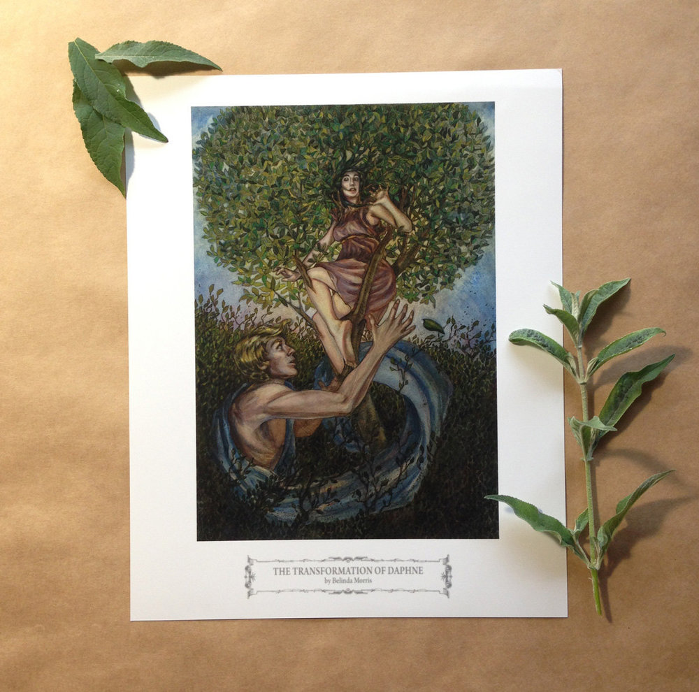 I've updated my Etsy shop :) Here is The Transformation of Daphne 8x10″ $7.50 (USD)