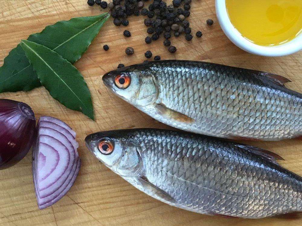 jarkisarkionerinomainenruokakala