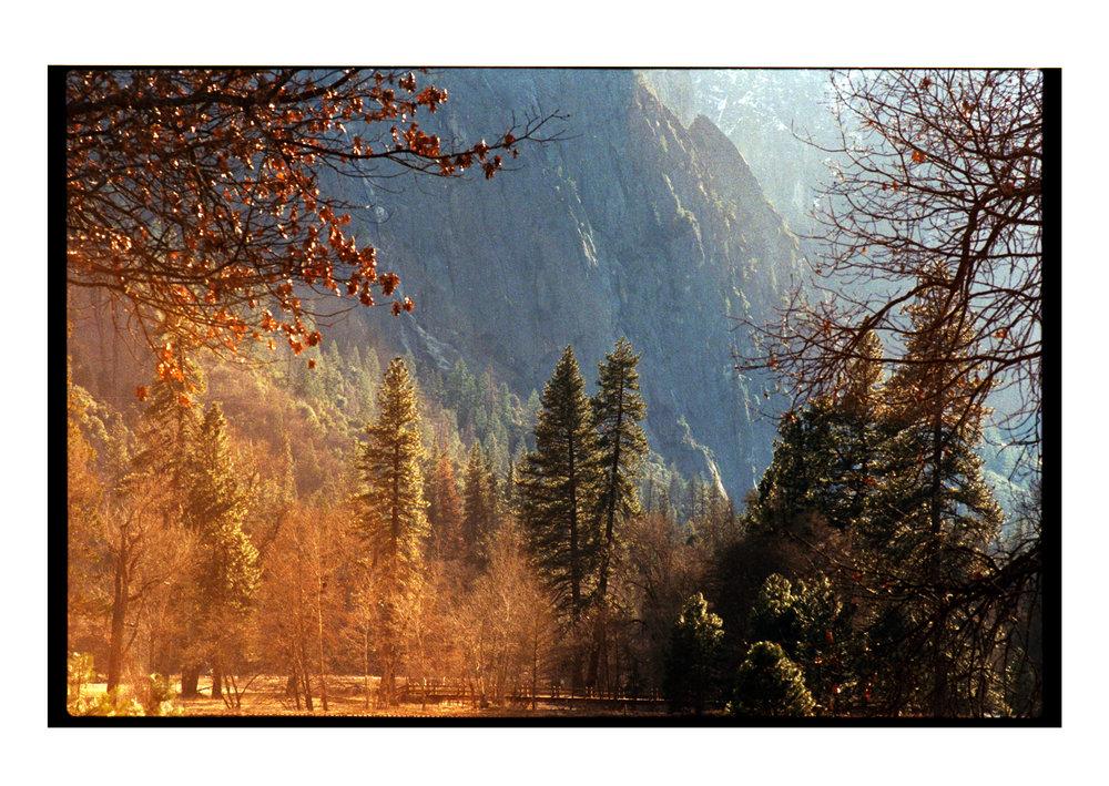 Notes V - California (22feb)21.jpg