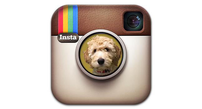 instagram-icon_MG.jpg