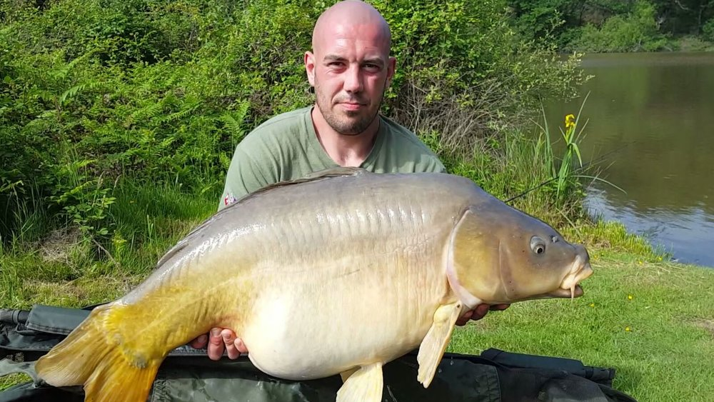 customer_catch_carp_47lb.JPG