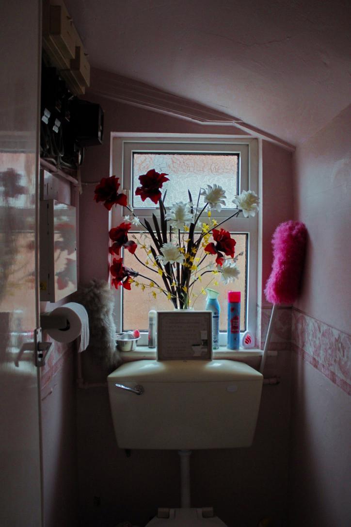 Bathroom in Pink.jpg