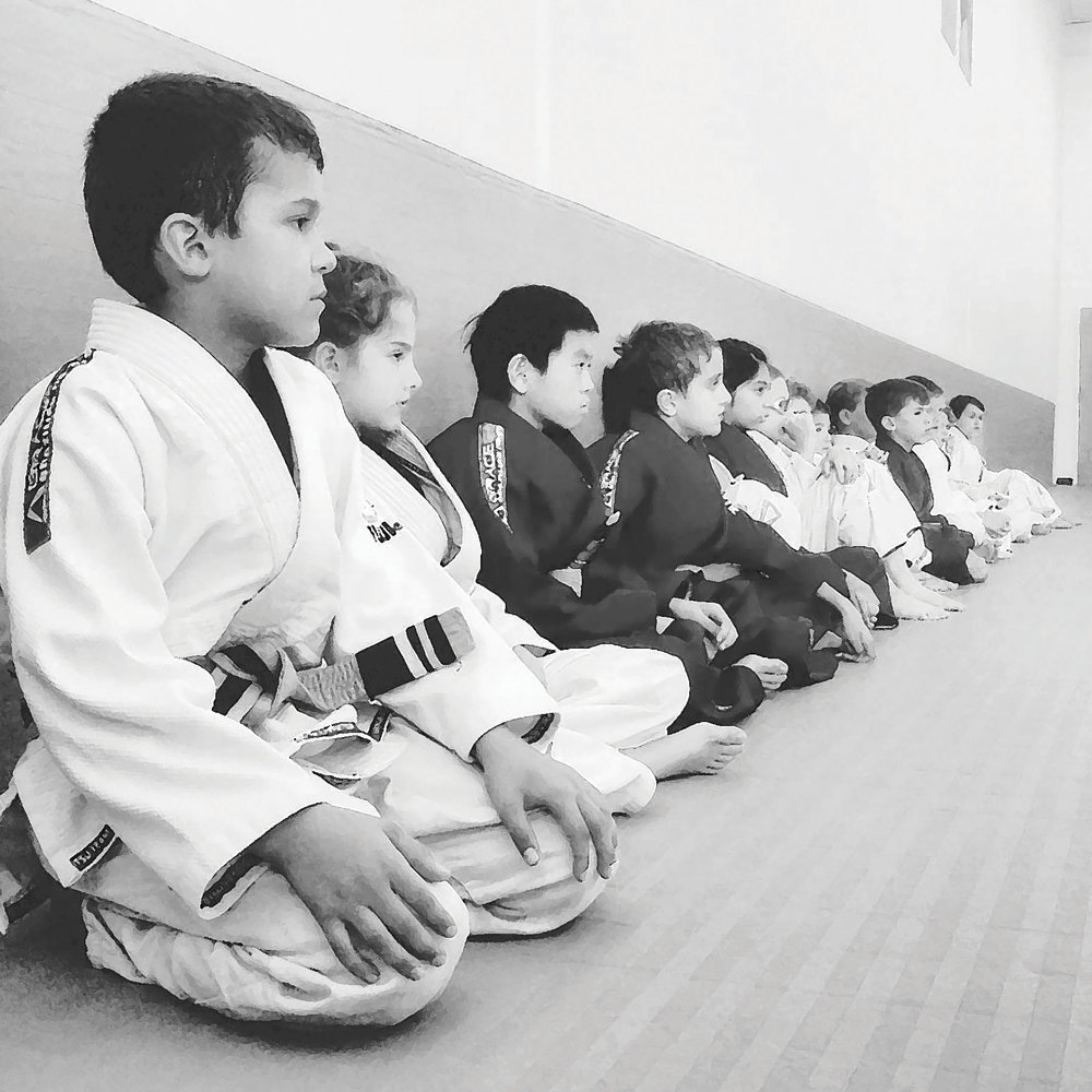 Meditation: - Before every Warrior rises to fight, we sit.  We learn to sit with our thoughts, assess the roots of what disturbs us and then determine if the fight is worth it.  In a World filled with distractions, this is one of the hardest aspects of life, even for adults.  By getting our kids comfortable with being quiet with their thoughts will help them navigate future conflicts with clear and thought provoking vision.