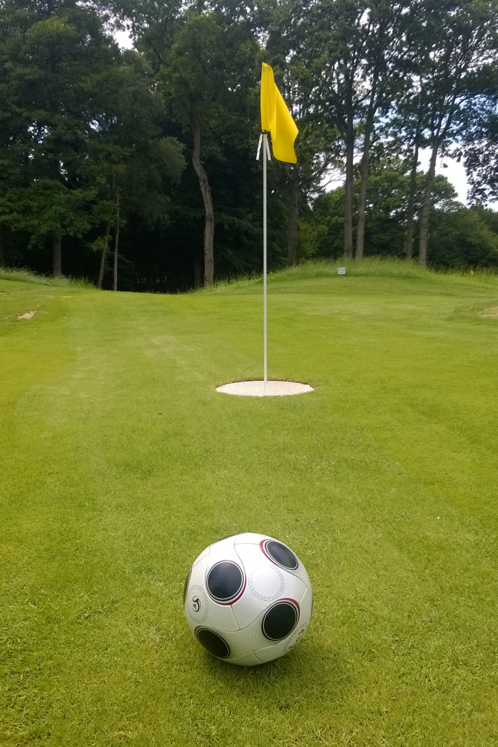 Gatwick Footgolf Hole.png