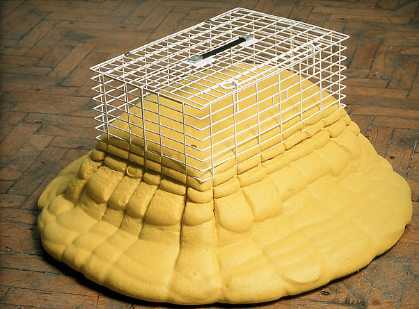 pet_cage.jpg