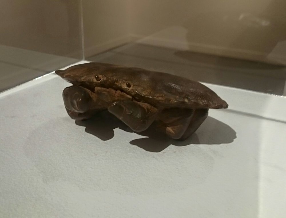 Dorothy Cross,  Crab (Cancer Pagorus) , 2015 Patinated bronze, 5 x 15 x 10 cm, Edition of 4