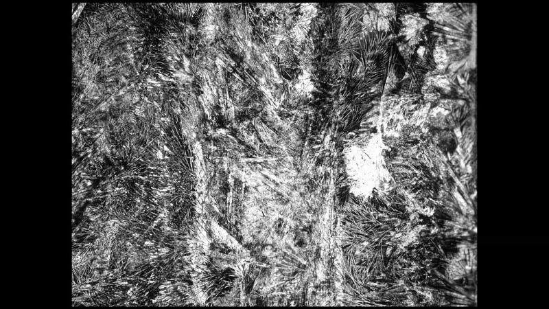 vlcsnap-2013-01-14-12h57m44s78.png