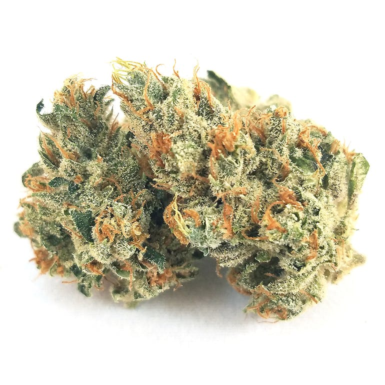 78455_Canndescent_-_Connect_410_1.jpg