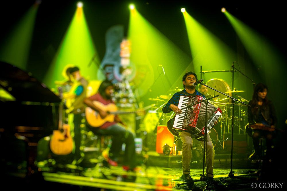 Rahman-green.jpg