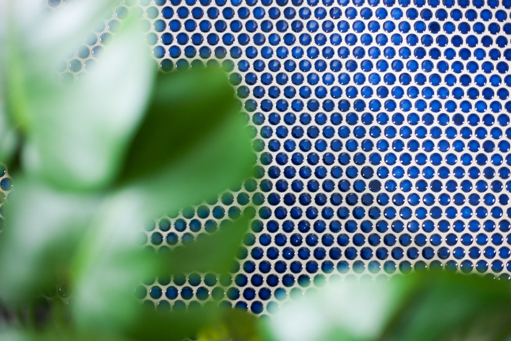 blue-penny-tile-scout-nimble-remodel.jpg