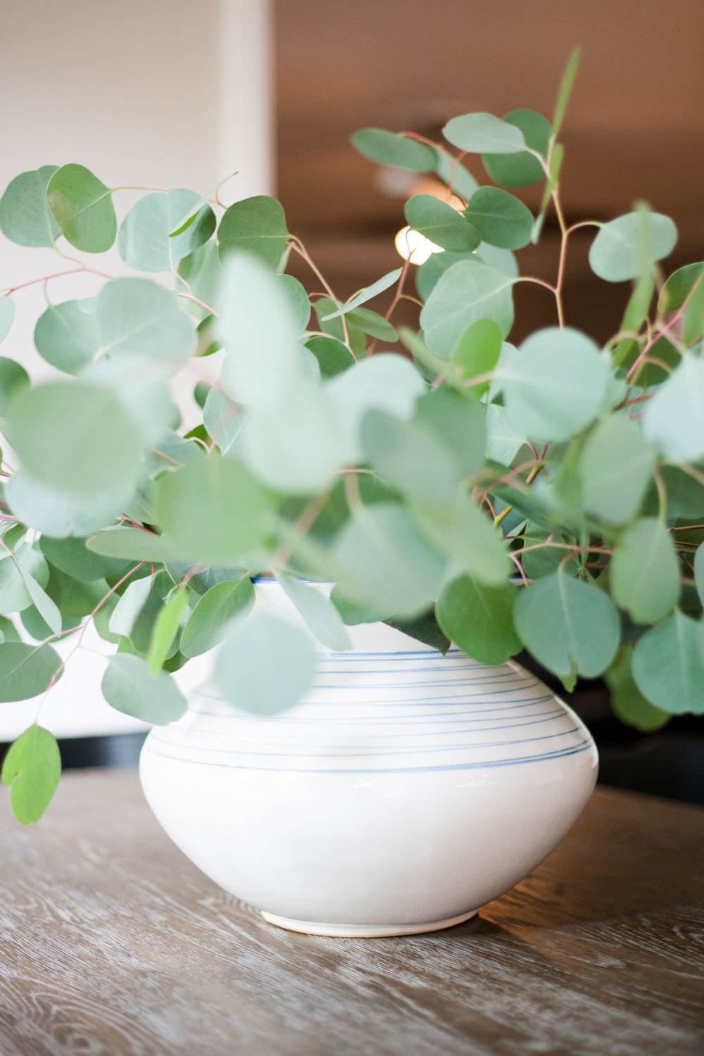 scout-and-nimble-go-to-greenery-eucalyptus.jpg