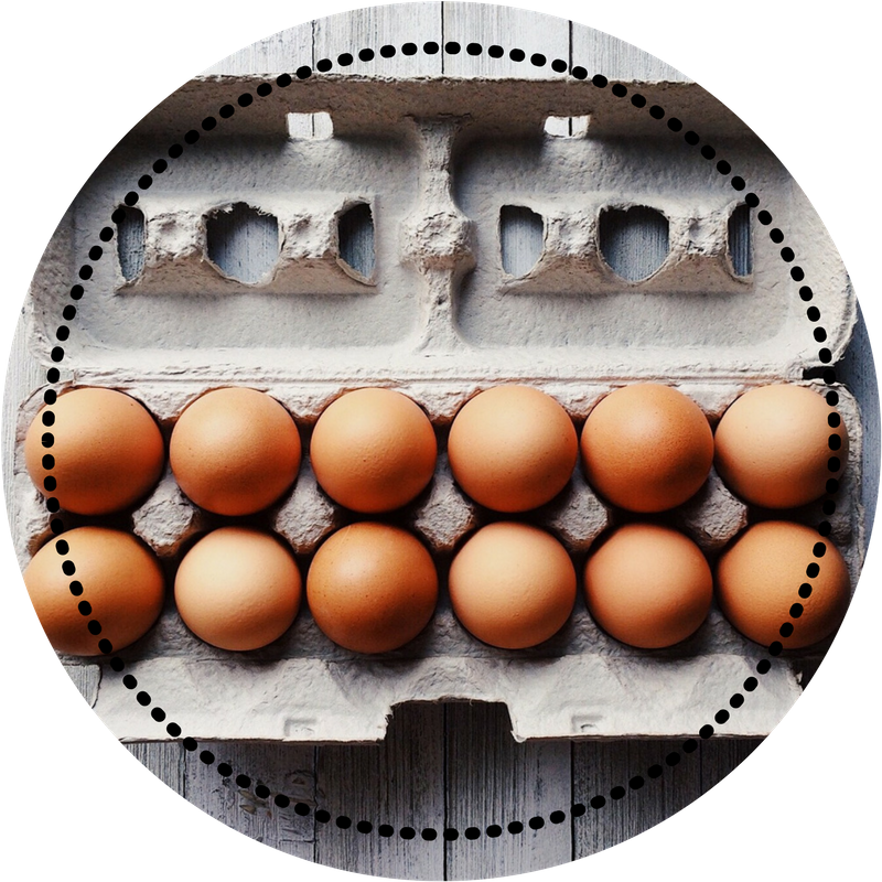 carton of eggs circle.png