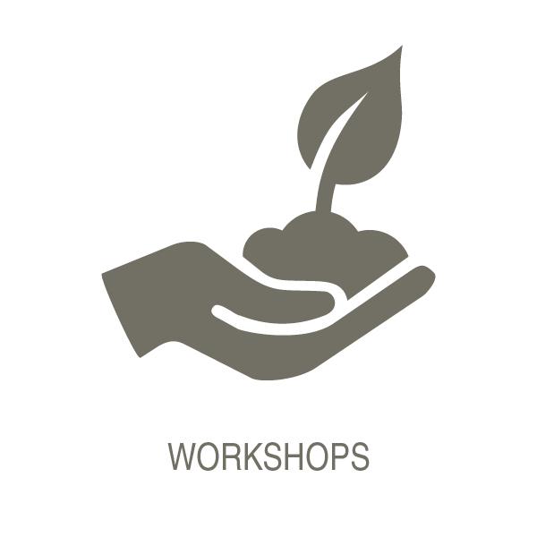 Workshops_T.jpg